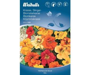 Blomsterkarse Mix
