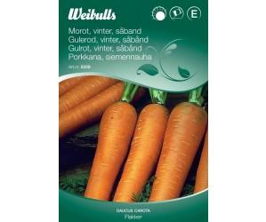 Gulerod, vinter (Såbånd)