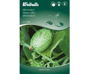 Melon mini