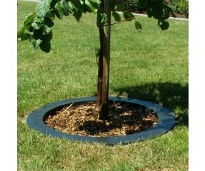 smartkant til træer