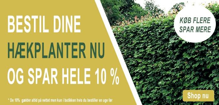 10% rabat på alle hækplanter ved forudbestilling
